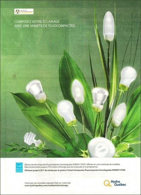 Fleurs fluocompactes (publicité Hydro-Québec)
